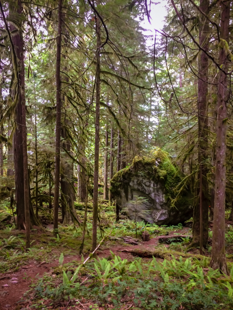 Travel Photos of Hikes in BC | Barbara Cameron Pix | Food & Travel Photographer