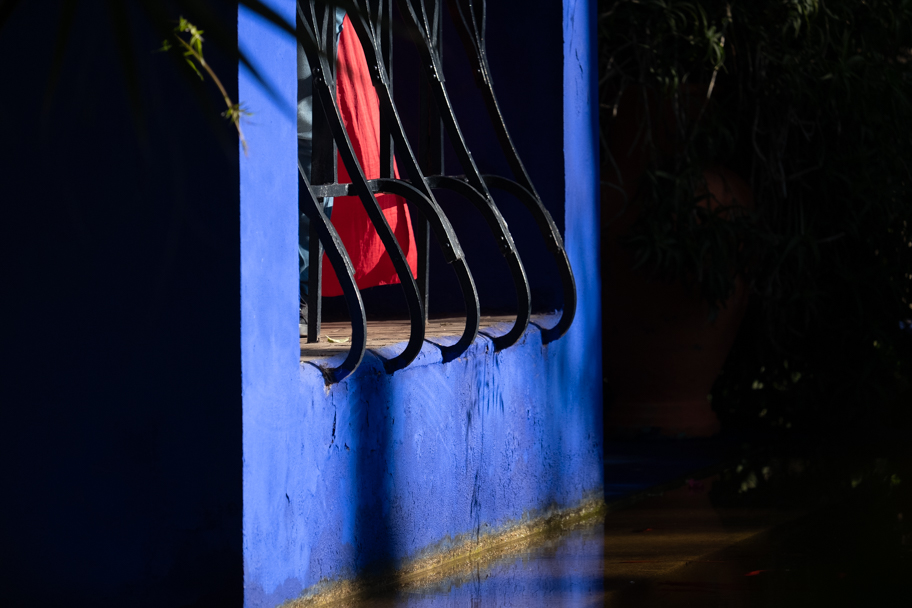 Details in Jardin Majorelle, Marrakech, Morocco| Barbara Cameron Pix | Food & Travel Photographer