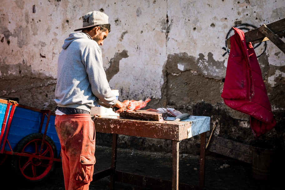 Preparing the Catch, Essaouira, Morocco | Barbara Cameron Pix | Food & Travel Photographer