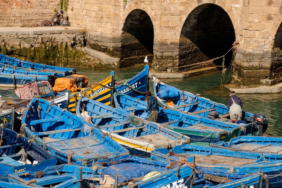 Fishing Boats, Essaouira, Morocco | Barbara Cameron Pix | Food & Travel Photographer