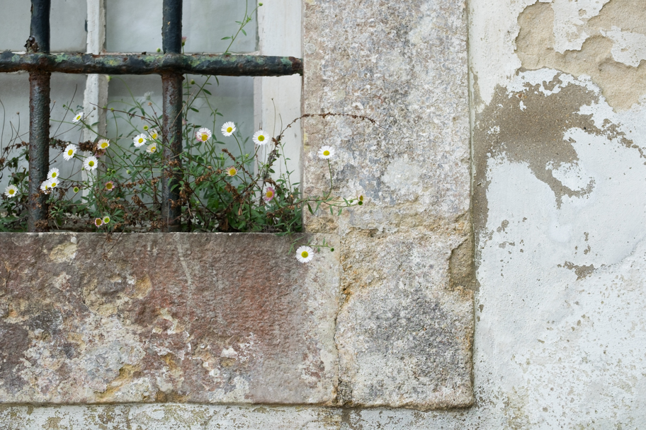 Textured window sill in Portugal by Barbara Cameron Pix
