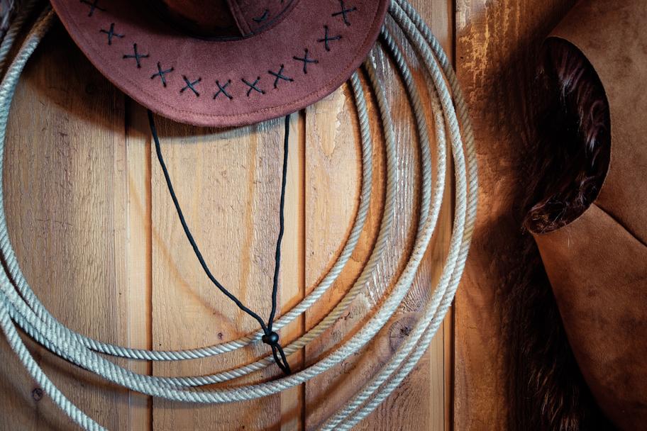 Equestrian Still Life by Barbara Cameron Pix, Pro Photographer