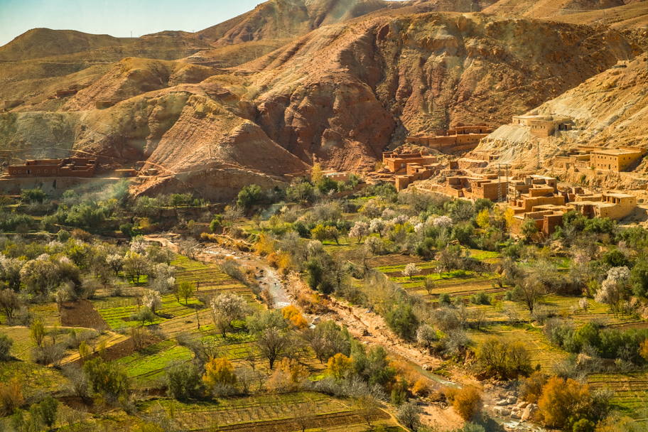 Fertile valley in Ouarzazate Province, Morocco | Barbara Cameron Pix | Food & Travel Photographer