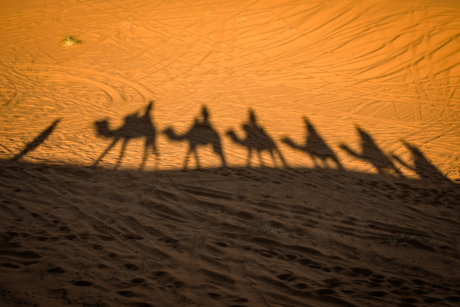 Camel trek shadows, Sahara Desert, Morocco | Barbara Cameron Pix | Food & Travel Photographer