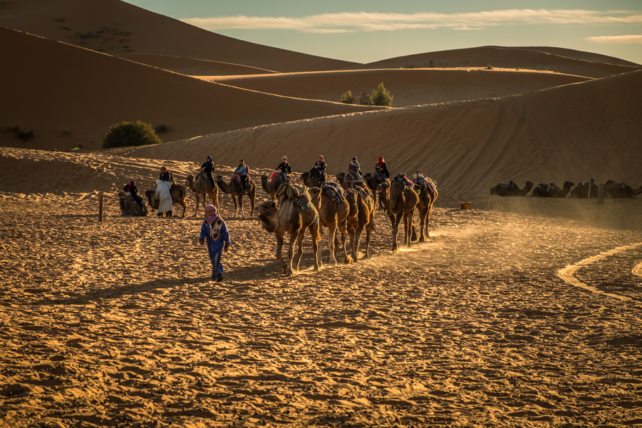 Camel trekkers arrive at camp, Sahara Desert, Morocco | Barbara Cameron Pix | Food & Travel Photographer