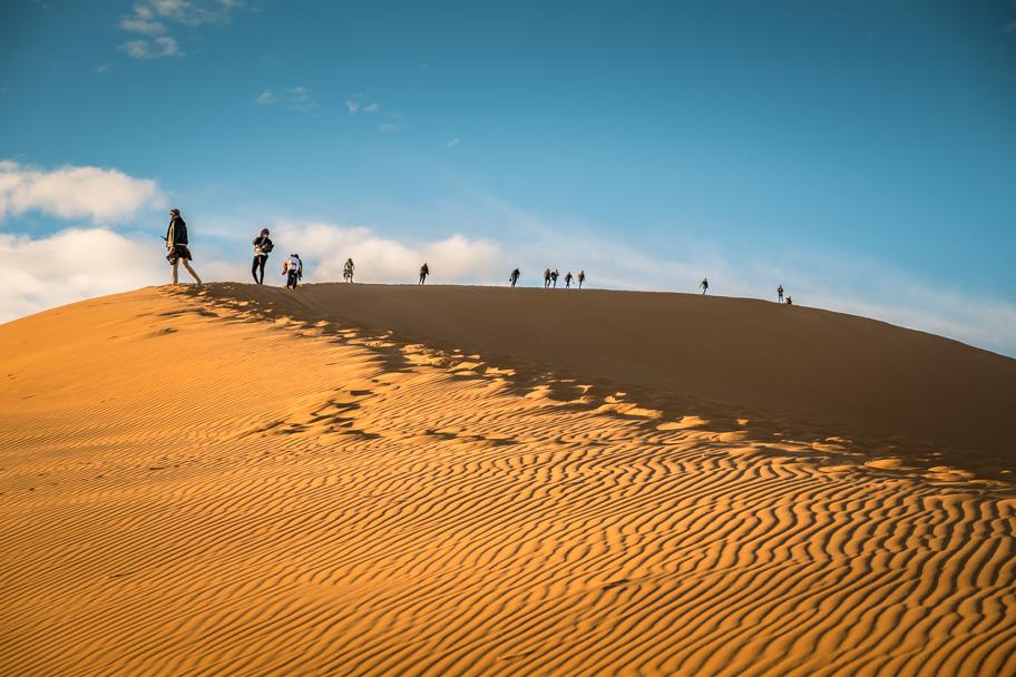 Camel, Sahara Desert, Morocco | Barbara Cameron Pix | Food & Travel Photographer