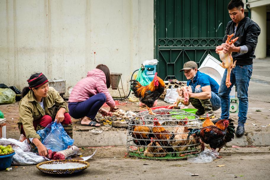 Street market vendor, Hanoi, Vietnam | Barbara Cameron Pix | Food & Travel Photographer