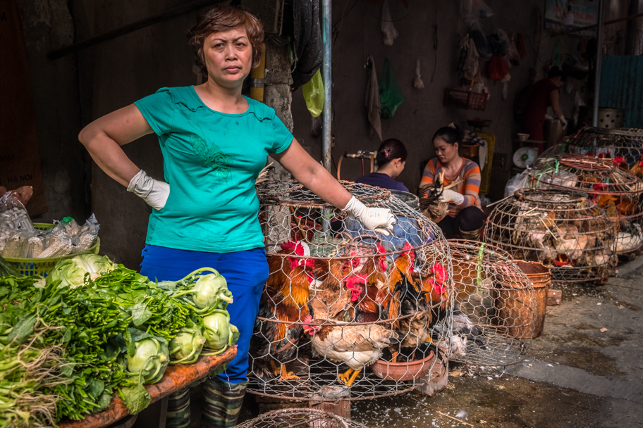 Fresh chickens for sale, Hanoi, Vietnam | Barbara Cameron Pix | Food & Travel Photographer
